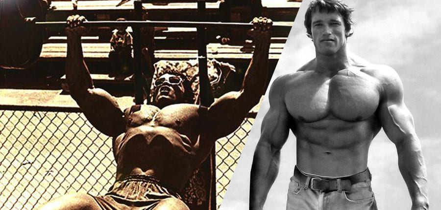 chest workout Archives...