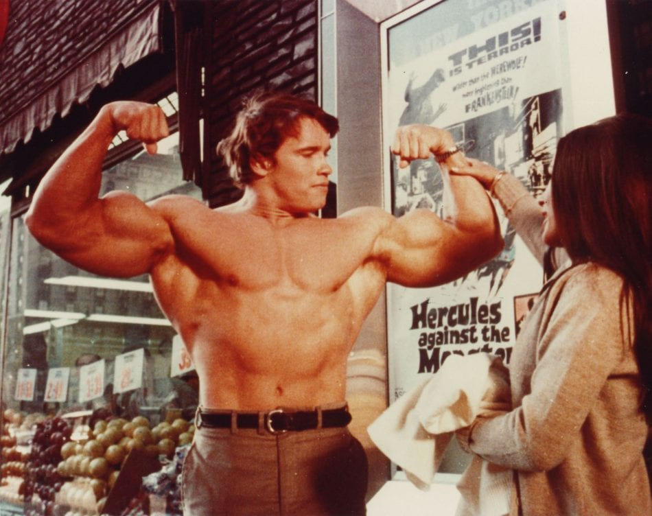 Arnold schwarzeneggers blueprint to cut arnold mirin 15 malvernweather Choice Image