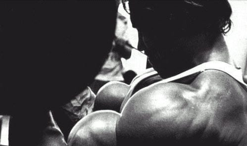 arnold muscle pharm bodybuilding supplement