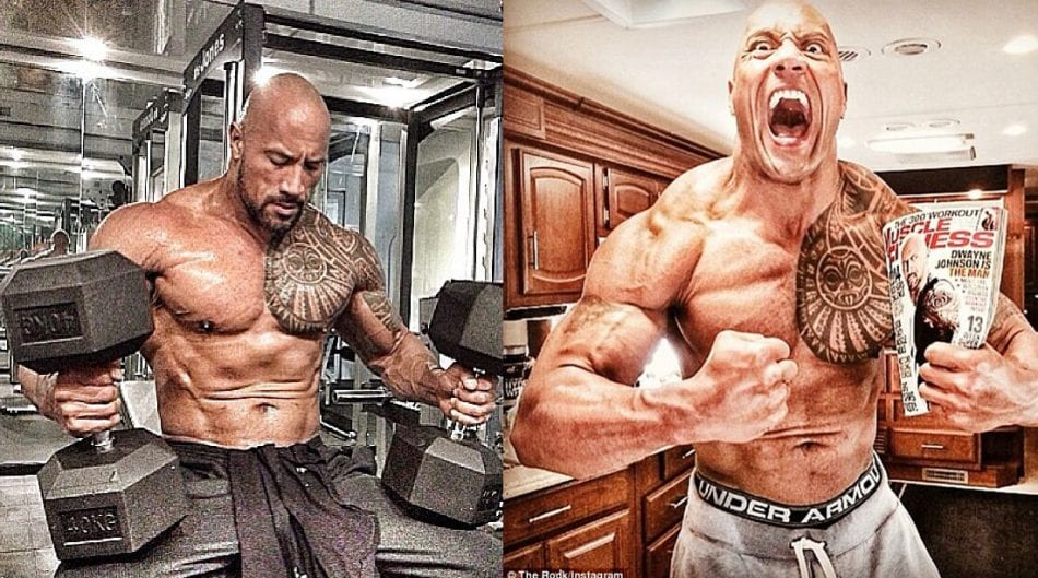 dwayne johnson the rock bodybuilding in gym