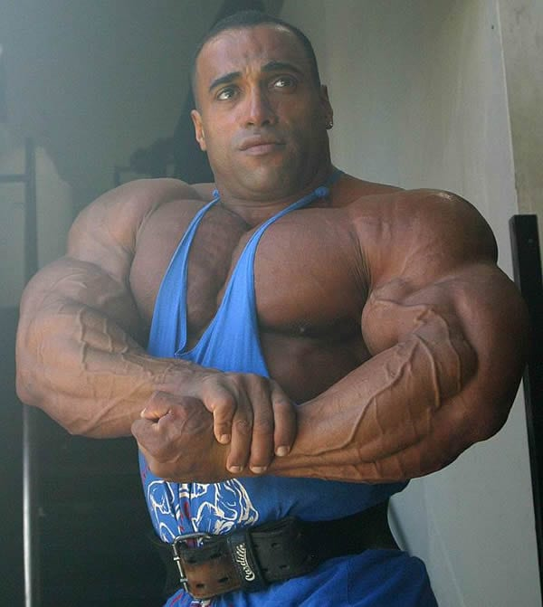 synthol users gallery