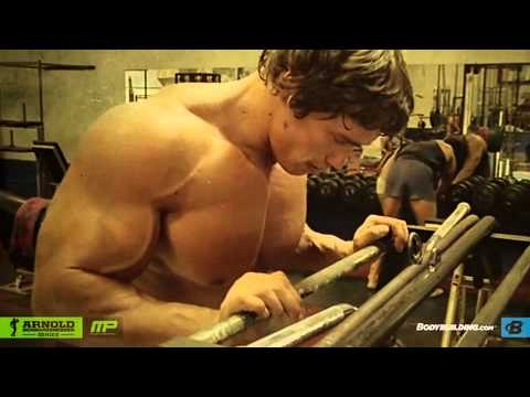 Arnold schwarzenegger blueprint to mass training malvernweather Gallery