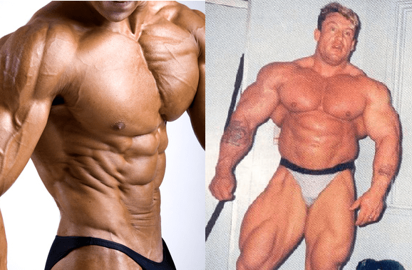 How Do I Gain More Muscle 23