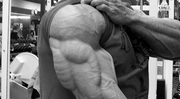mass building tricep exercises