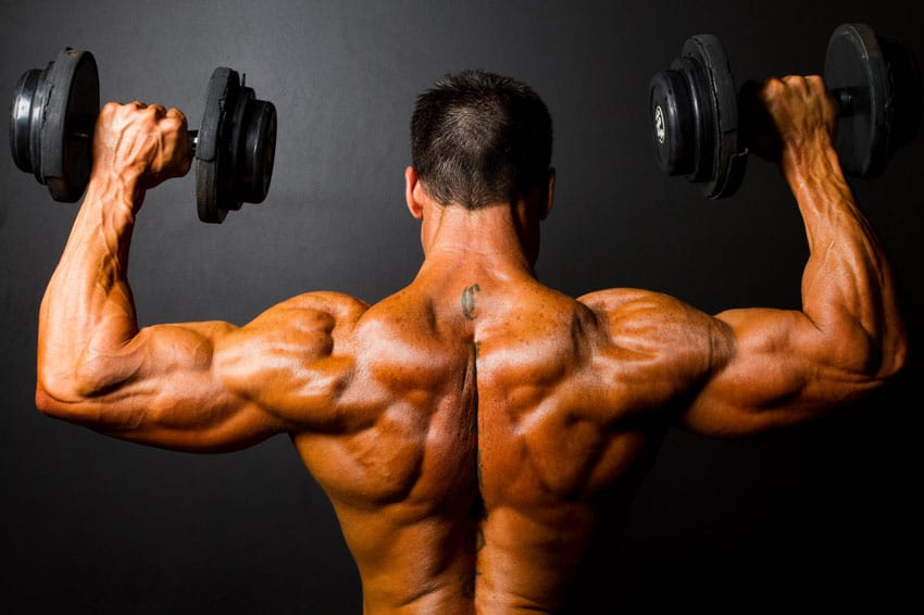 How to Build a Huge Back