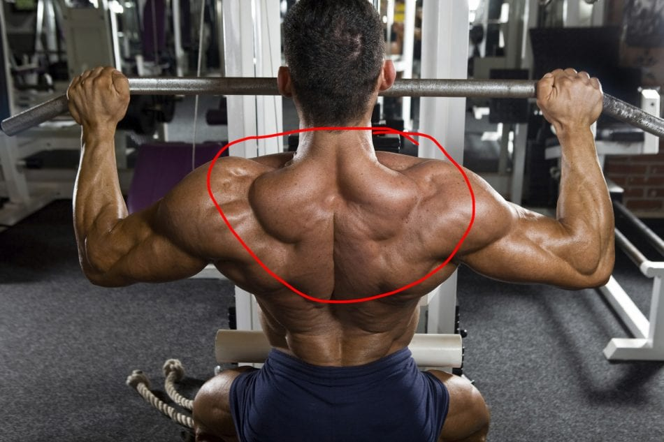 2 Exercises For Giant Trap Muscles | BroScience