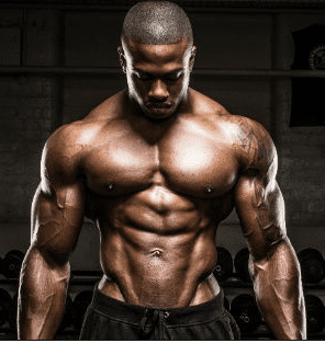 How Testosterone and Muscle Growth Is Linked Together