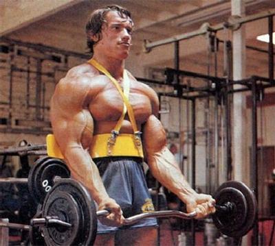 Arnold Bicep Curl Arm Blaster1