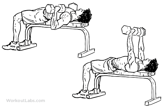 Dumbbell_Bench_Press