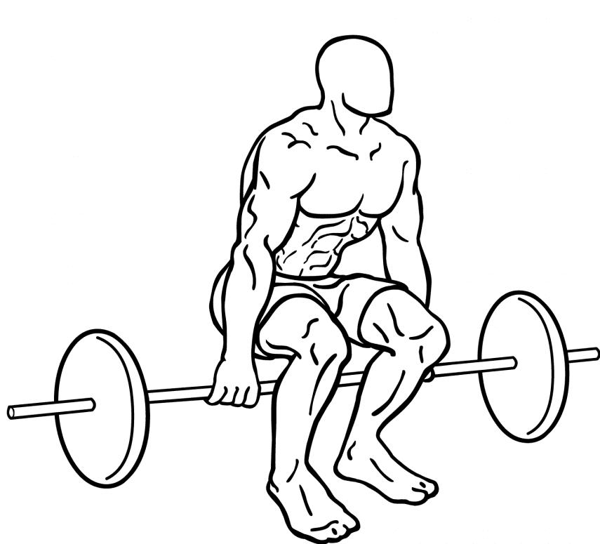 Hack-squat-2-856x1024-e1411337979776
