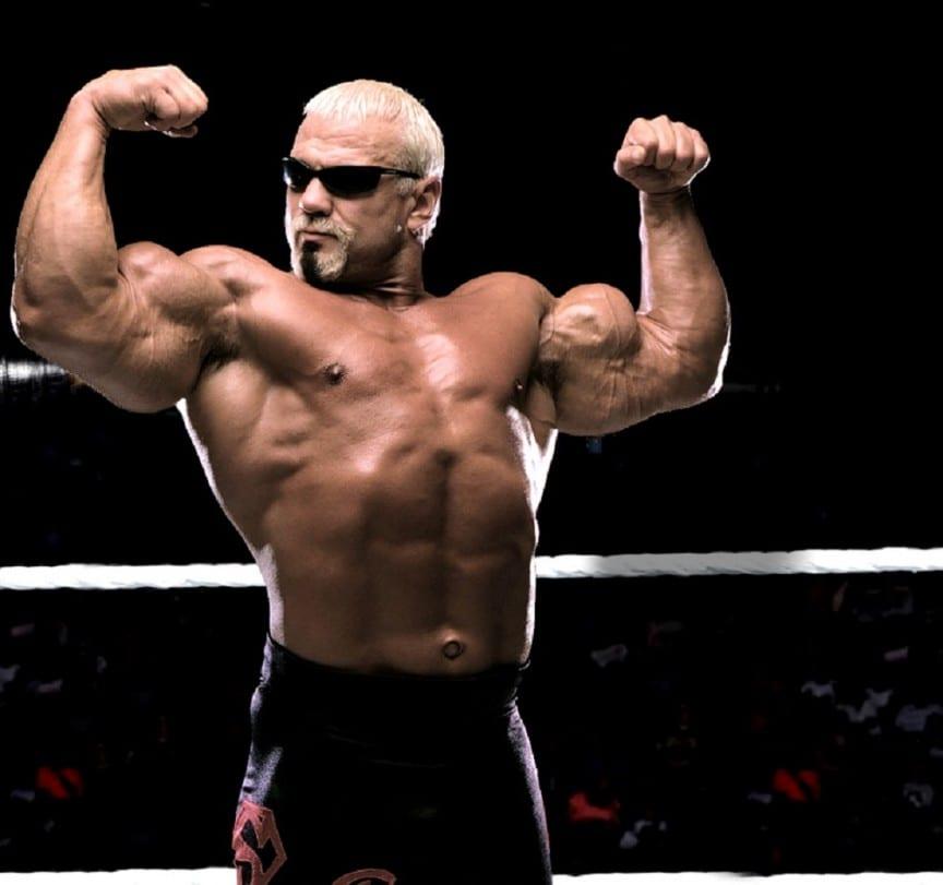 Steiner-WWE