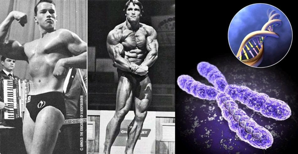 Arnold Had Bad Genetics For Bodybuilding, This Is How He