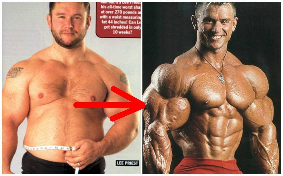 And fat bodybuilding