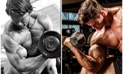 stubborn fat steroids