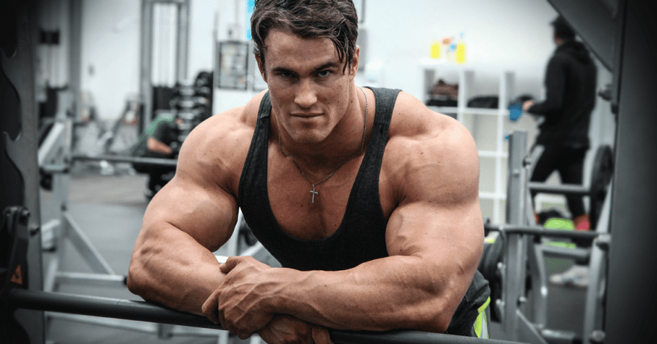 what steroids build muscle