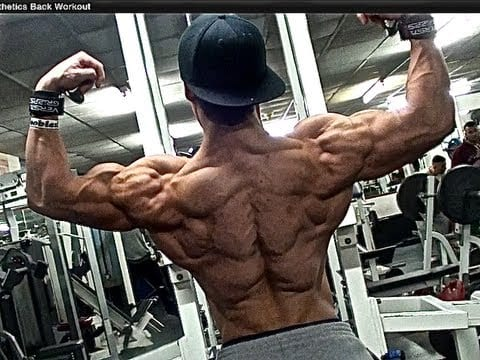 shredded aesthetic back workout  broscience