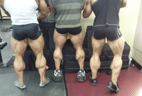 build bigger calves