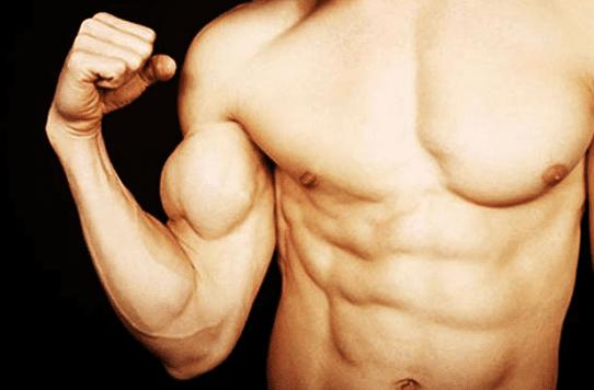 put on muscle mass