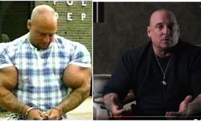 test 400 steroid gains