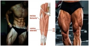 10 Ways to Build Huge Quads That Are Shockingly Simple