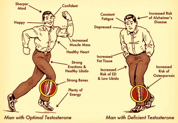 how to raise your testosterone