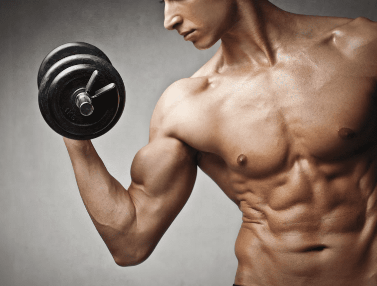 Muscle Building Supplements For Hardgainers