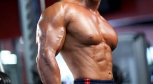 build new muscle mass