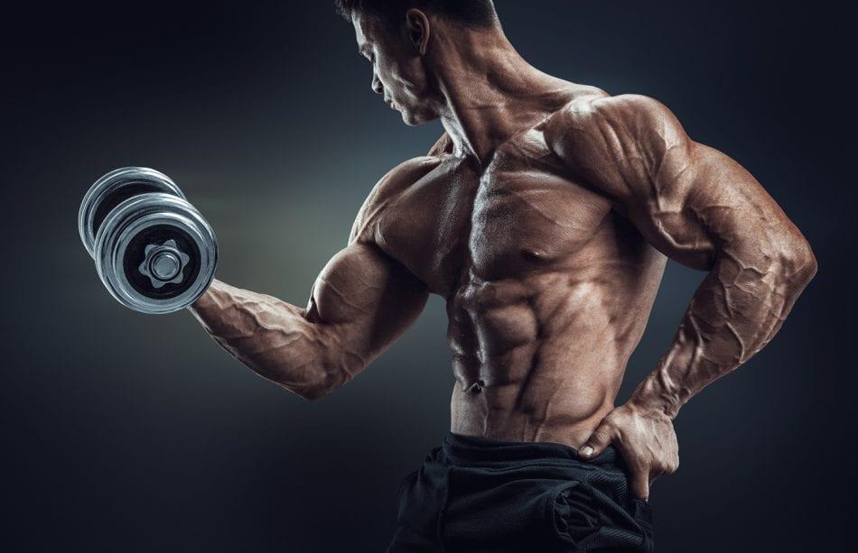 decrease estrogen and increase testosterone