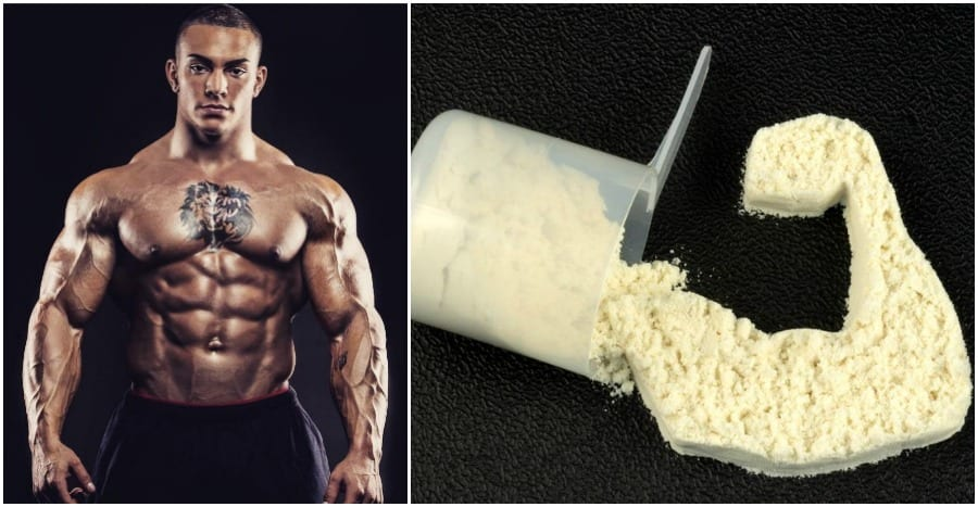 protein impact on testosterone levels