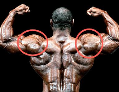 7 Best Shoulder Exercises You're Not Doing