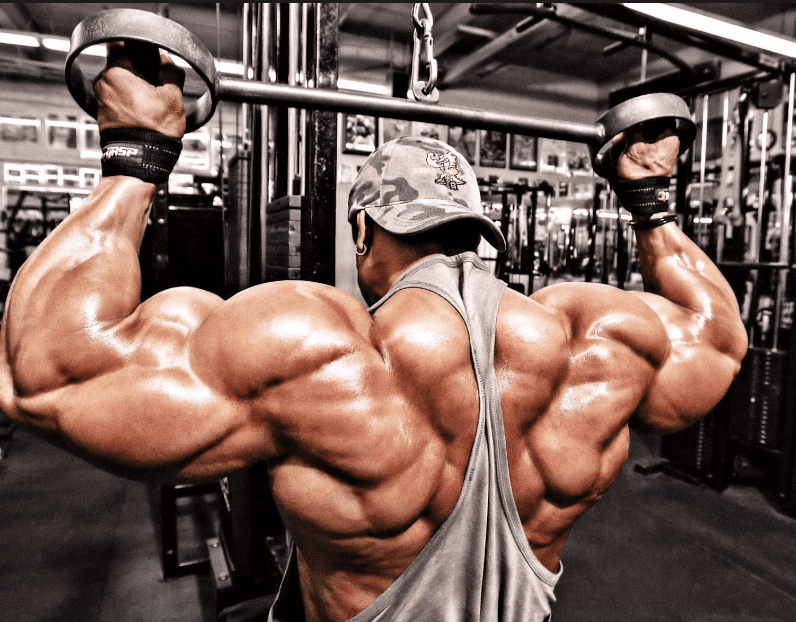 Proven Facts To Build Muscle