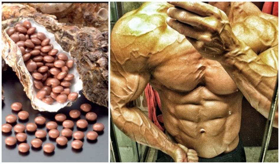 Oyster Extract for Higher Testosterone Levels - Does It Work?