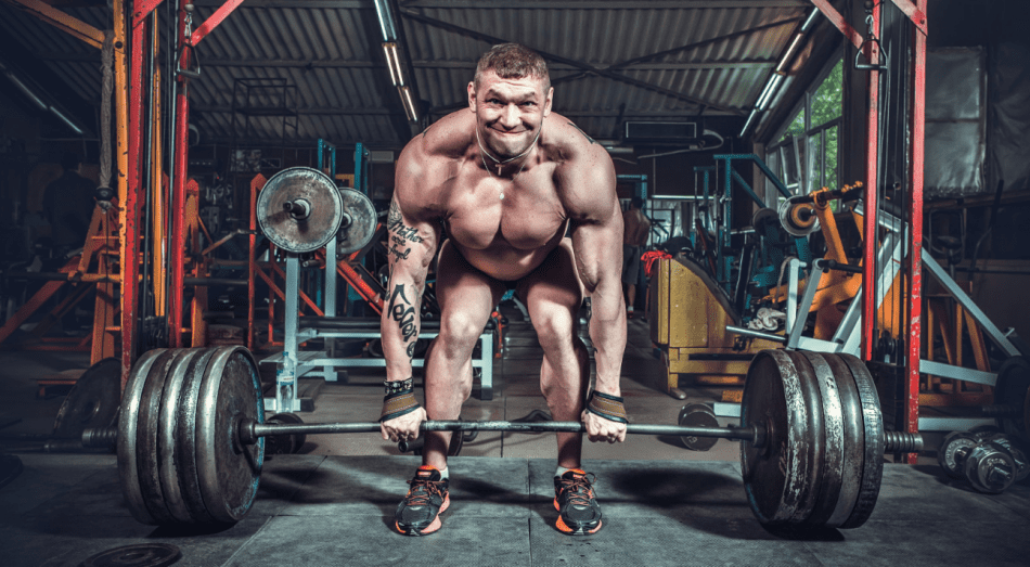 exercises that build muscle in 60 days