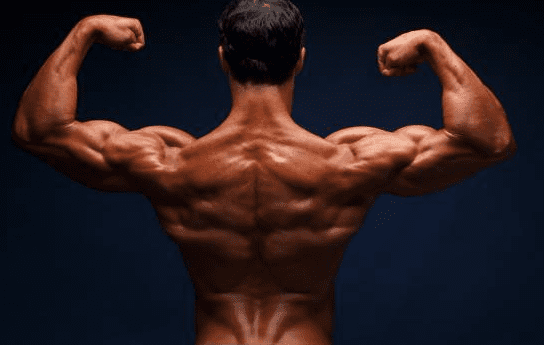 8 Reasons Why Your Muscles Have Stopped Growing