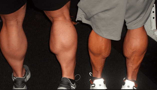 How to Grow Calves by 42% By Using These Tips