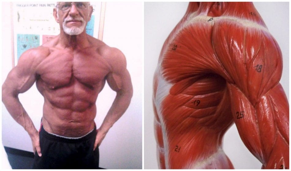 How to Prevent Naturally Occurring Muscle Loss That Comes