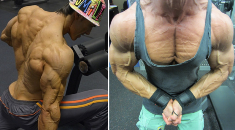 trenbolone make you tired