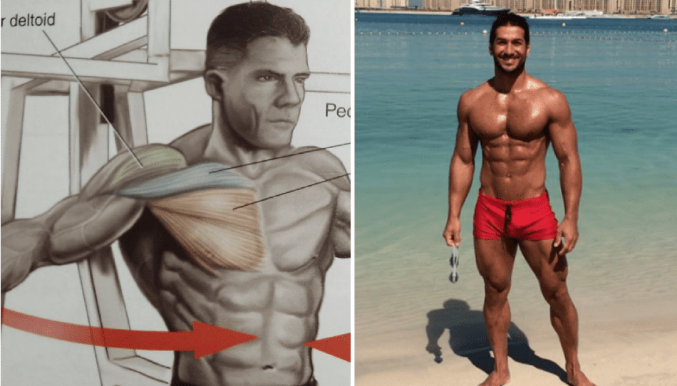 6 Most Obvious Ways To Lose Man Boobs And Stomach Fat Fast-2675