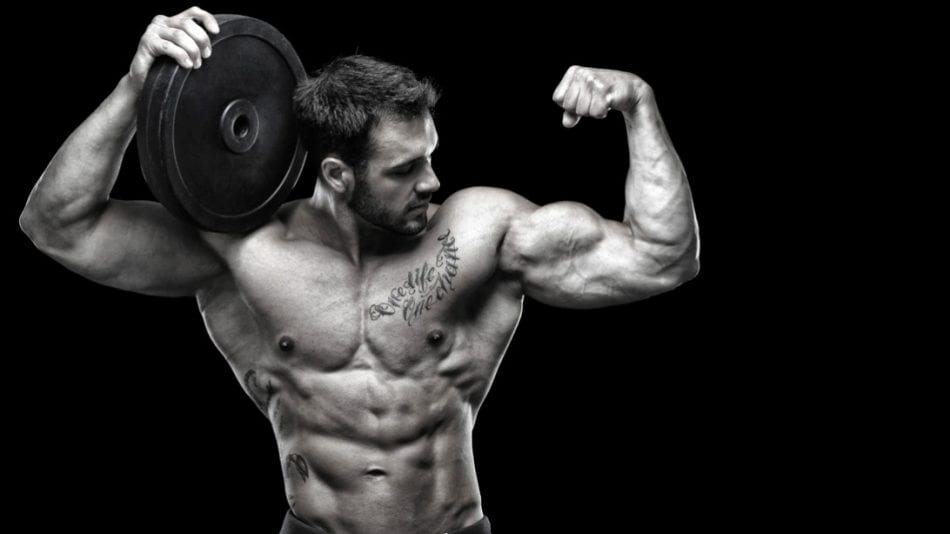 dianabol review the legal alternatives