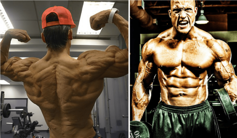 Best Legal Steroids in 2017 - Top 10 Steroid Alternatives