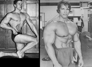 Arnold Schwarzenegger Steroid Cycle  – What He Used To Build Up His Physique