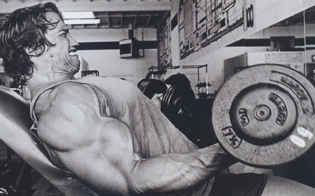arnold schwarzenegger diet and workout program