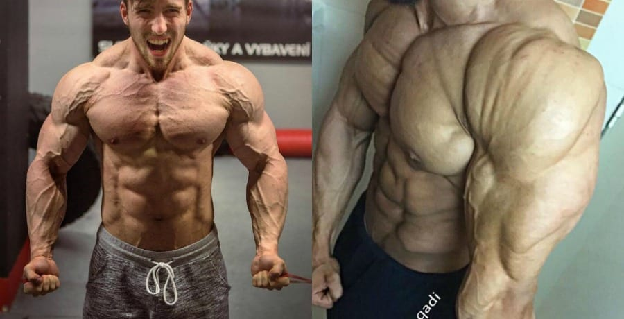 trenbolone effects