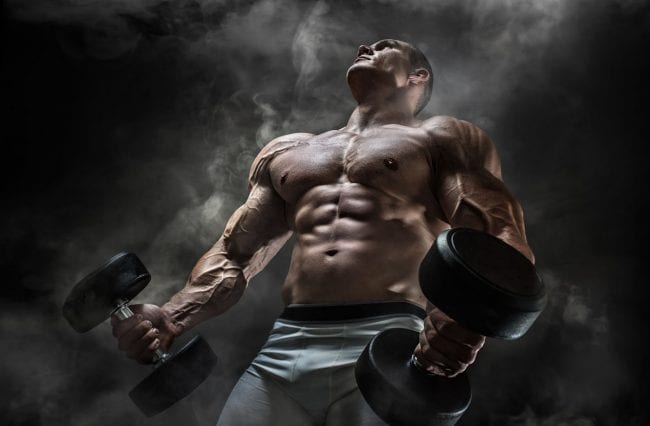 broscience workout