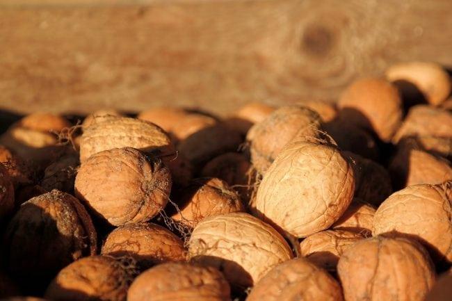 hydroxyelite review walnut