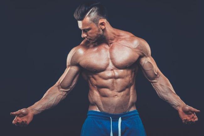 lean muscle 1