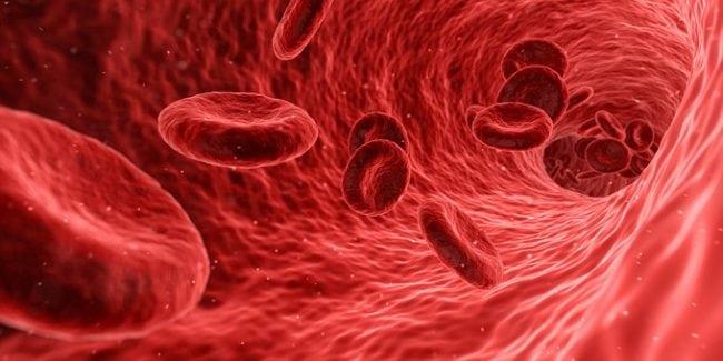 workout supplements blood