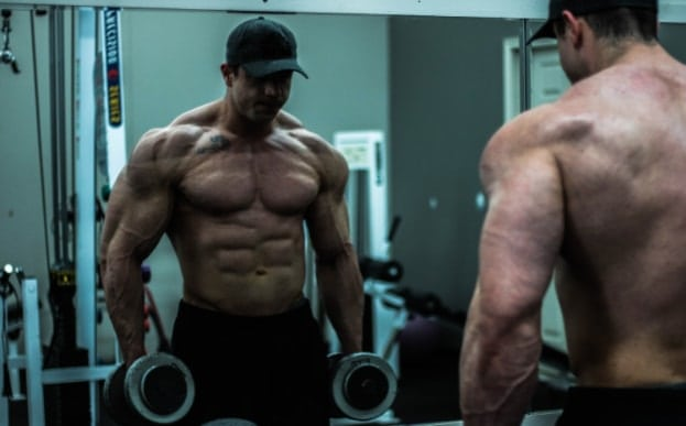 workout supplements muscle