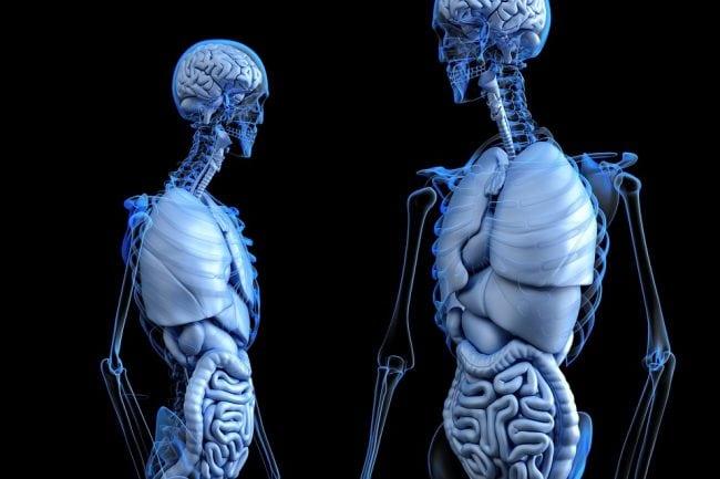 best d aspartic acid body
