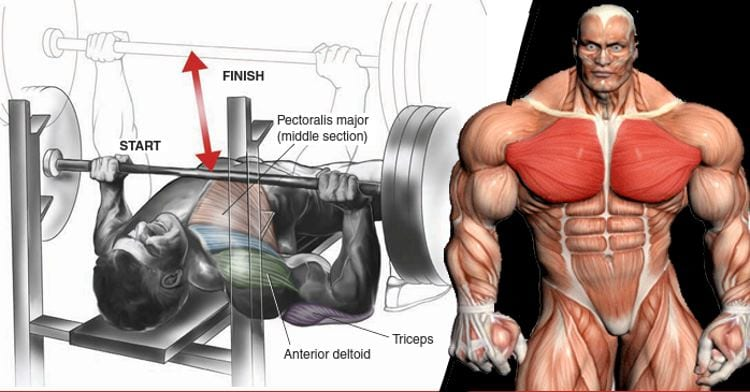 top bench press mistakes